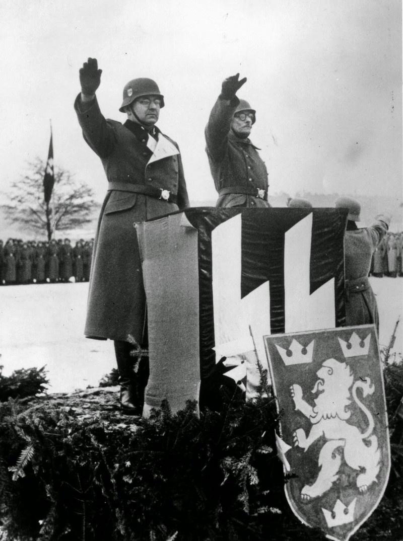 14-й гренадёрская дивизия СС «Галиция» на смотре.